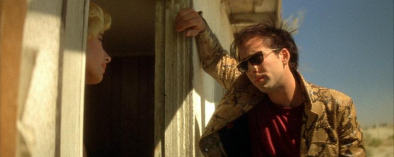 Nicolas Cage wild at heart