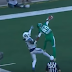 Duron Carter makes incredible one-handed, backhanded TD catch (Video)