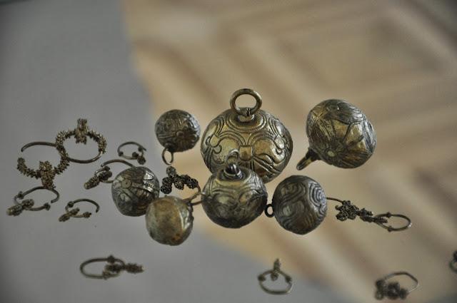 gombiki i zausznice z Pohansko u Břeclavi