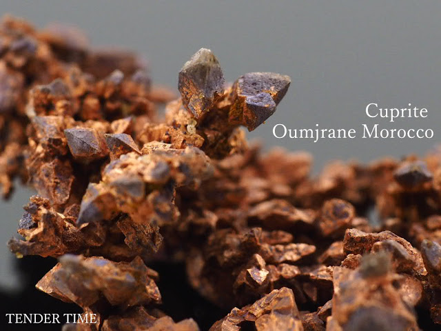 Cuprite Cuprite Oumjrane Morocco キュプライト キュープライト 赤銅鉱