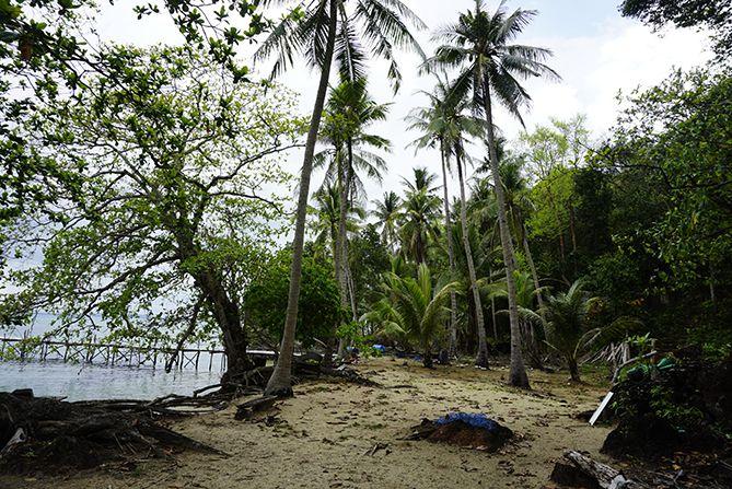 Lahan luas bisa untuk berkemah di tepian pantai