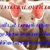 சீனாவில் புதிய வகை வைரஸ் மக்கள் பீதி :வைரஸ்களின் பிறப்பிடமாக மாறிய சீனா :
