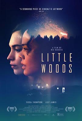 Little Woods / Crossing The Line 2018 DVD R1 NTSC Sub