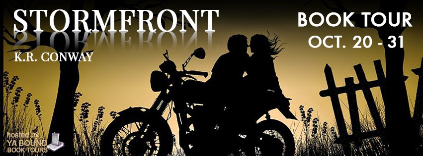 http://yaboundbooktours.blogspot.com/2014/09/blog-tour-sign-up-stormfront-undertow-2.html