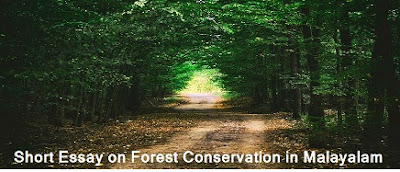 Short Essay on Forest Conservation in Malayalam