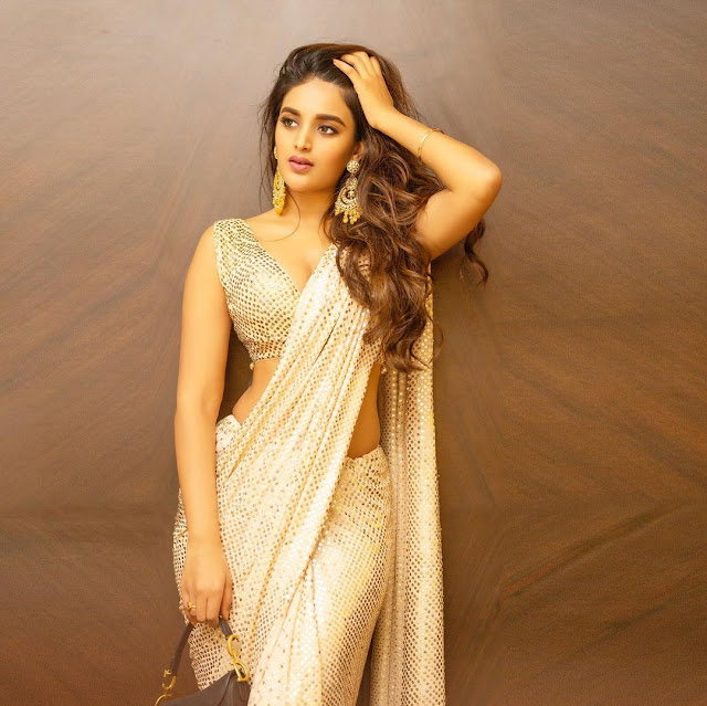 Nidhhi Agerwal (Indian Actress) Wiki, Age, Height, Family, Career, Awards, and Many More...