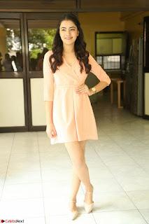 Rukshar Mir in a Peachy Deep Neck Short Dress 133.JPG