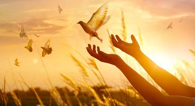 6 consejos para ayudarte a creer en la magia cuando la vida se pone difícil