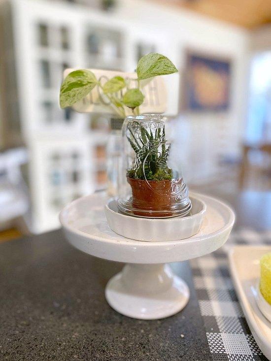 DIY Decorative Recycled jar succulent terrarium
