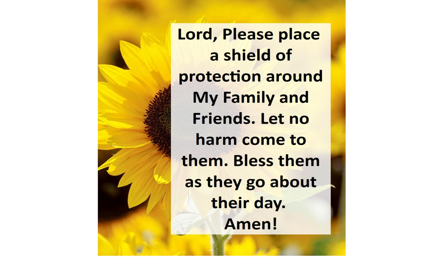 Lord Please Place A Shield Of Protection Around Our Loved Ones