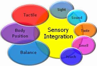 Be er yap m bak m onar m ebru 39 nun ocuk geli im notlar for Sensory motor integration disorder