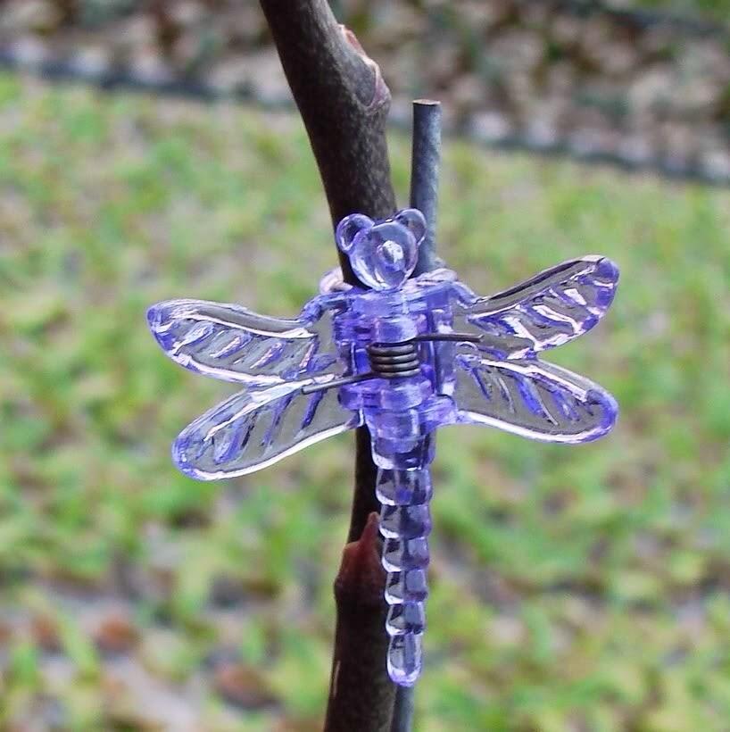 Sử dụng cây ty và kẹp bướm cố định nhánh hoa