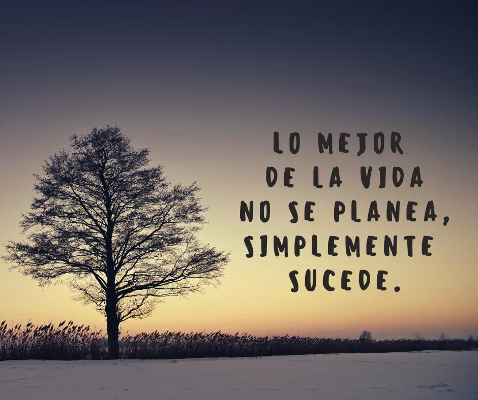 Frases De La Vida 24052019