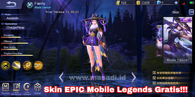 script skin Mobile Legends