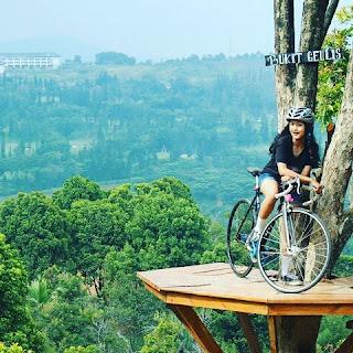 Rute Dan Lokasi Bukit Geulis Bogor, Kini Ada Rumah Pohonya