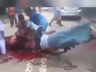Cow Nearly Killed A Man That Tries To Tied It Down For Killing. VIDEO