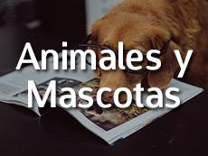 Animales y Mascotas Roku