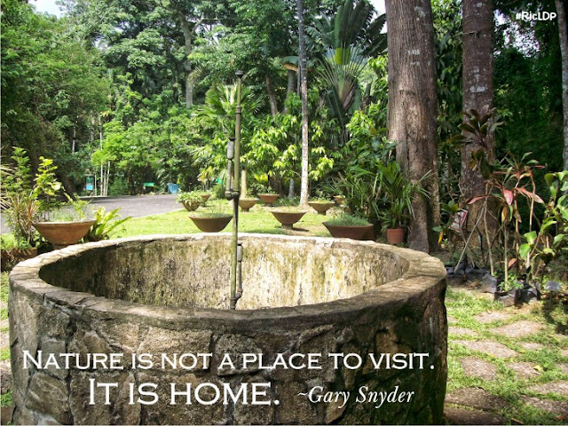 Nature is not a place to visit. It is home.