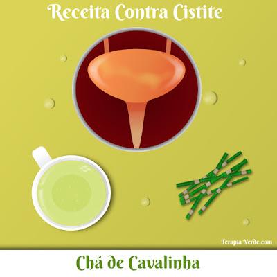 Receita Contra Cistite: Chá de Cavalinha