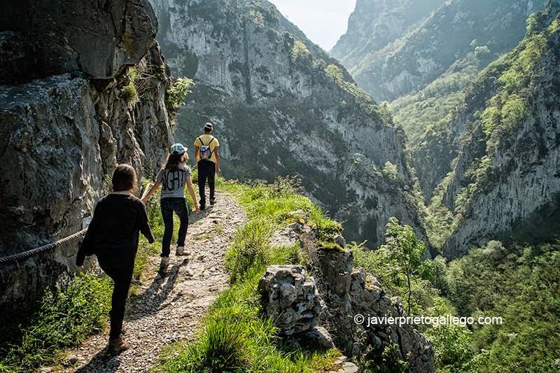 En algunos puntos una cuerda ayuda a mantener el equilibrio en el desfiladero de Las Xanas. Asturias. España. © Javier Prieto Gallego