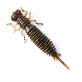 """Larva 2.5"""" (006)"""