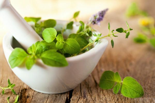 نصائح أولية موجزة عن الأعشاب