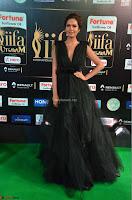 Esha Gupta in a Deep Neck Sleeveless Dark Green Gown at IIFA Utsavam Awards 2017     03.JPG