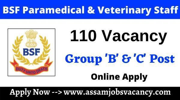 BSF Paramedical & Veterinary Staff Vacancy 2021 – 110 Vacancy Available