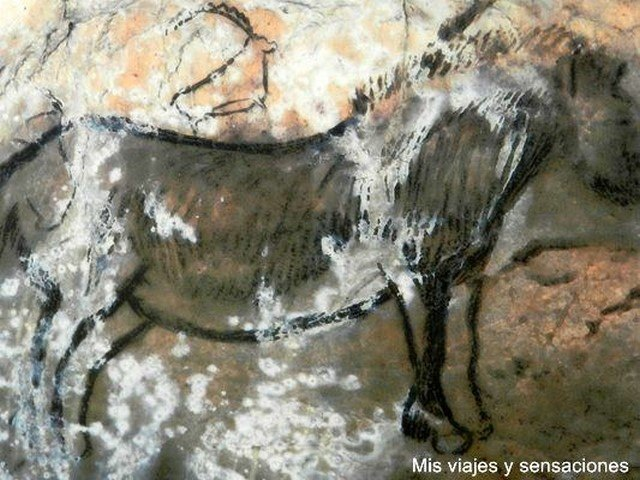Pinturas rupestres cueva de Niaux, Ariége, Midi-Pirineos, Francia