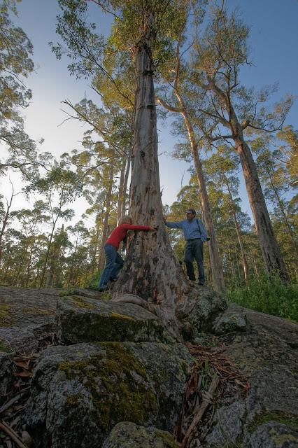 Porongurup National Park Great South West Edge Western Australia Perth Curitan Aqalili