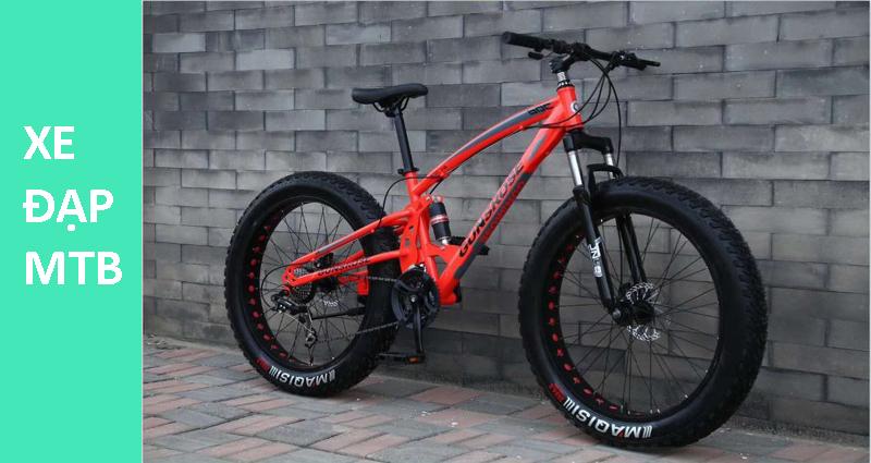 Xe đạp địa hình (MTB)