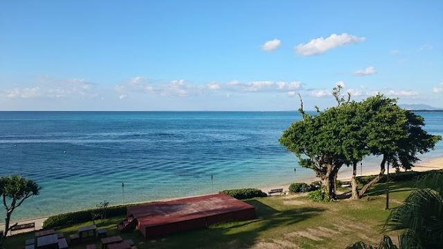 谷茶の海の写真