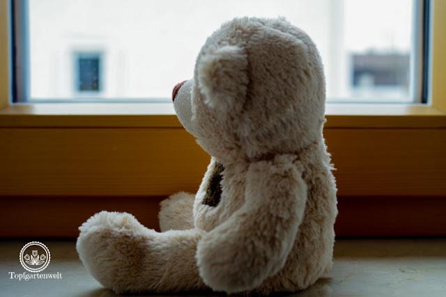 Unerfüllter Kinderwunsch: Kann man trotz niedrigem AMH-Wert schwanger werden? Ursachen rechtzeitig erkennen und handeln!
