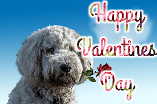 Valentine Day images with name