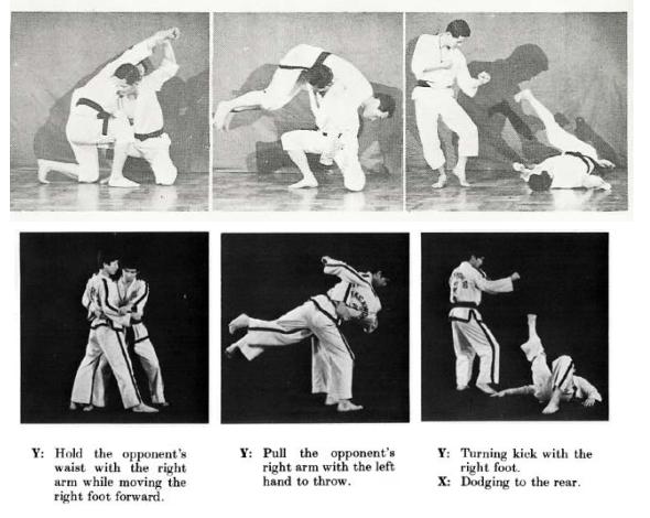 Worpen horen ook bij Taekwon-Do