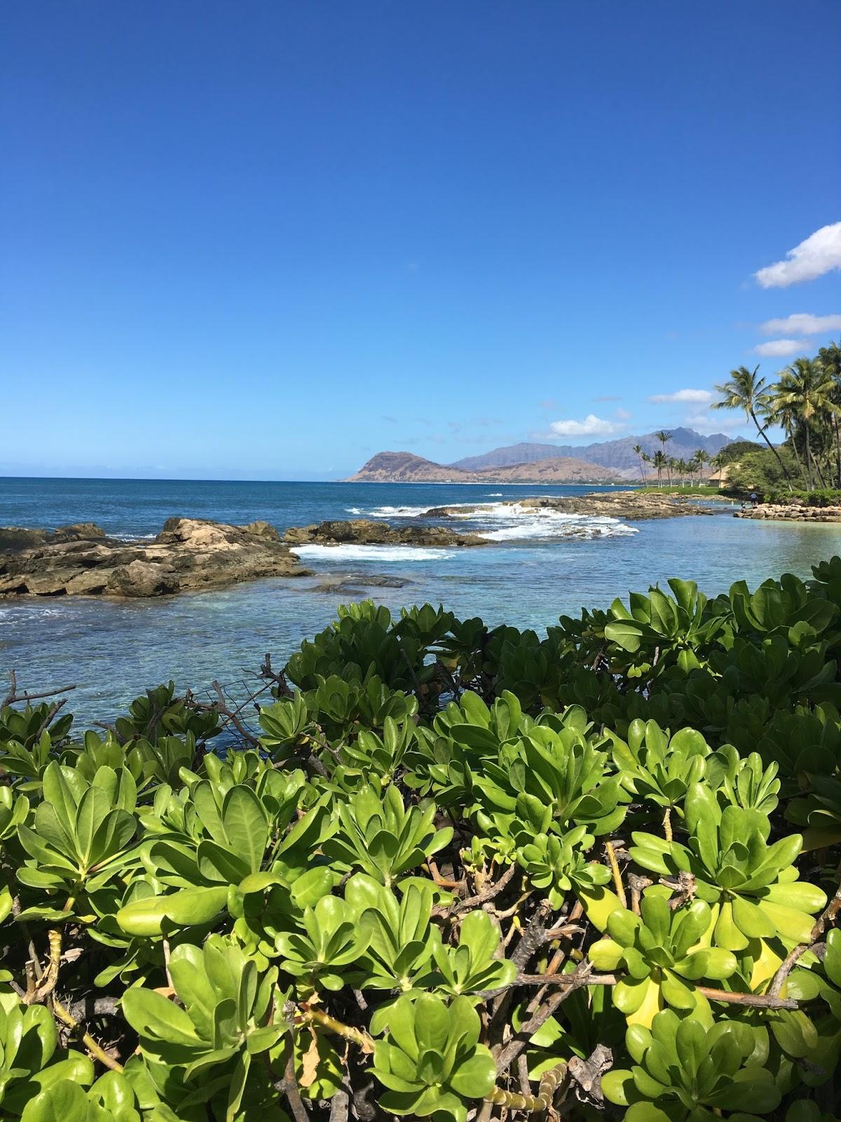Agnes Blog @ Masako Formals in Hawai'i
