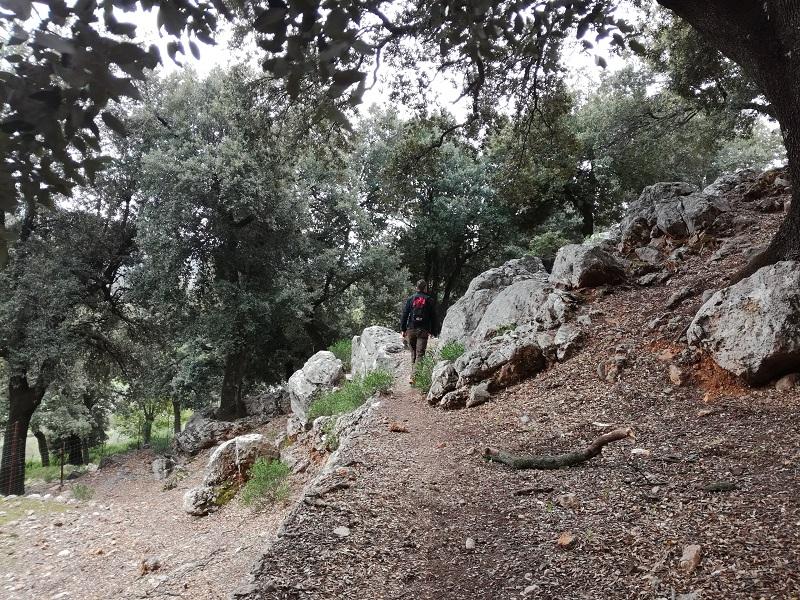 Salendo verso el Puig Roig