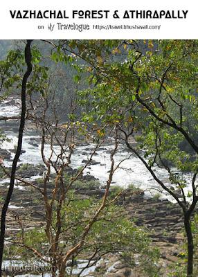 Vazhachal Forest Pinterest
