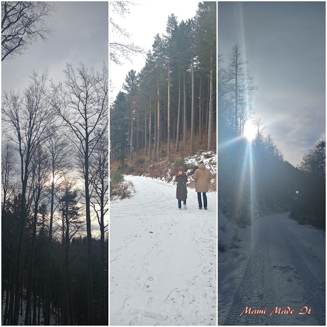 Walk in the woods - Winterspaziergang