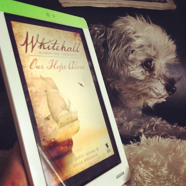 A fuzzy grey poodle, Murchie, appears in near profile with his ears perked. In front of him, at a slight angle to the camera, is a white Kobo with the cover of Whitehall Episode Ten on its screen. The cover features a ship sailing on a sepia-toned sea.