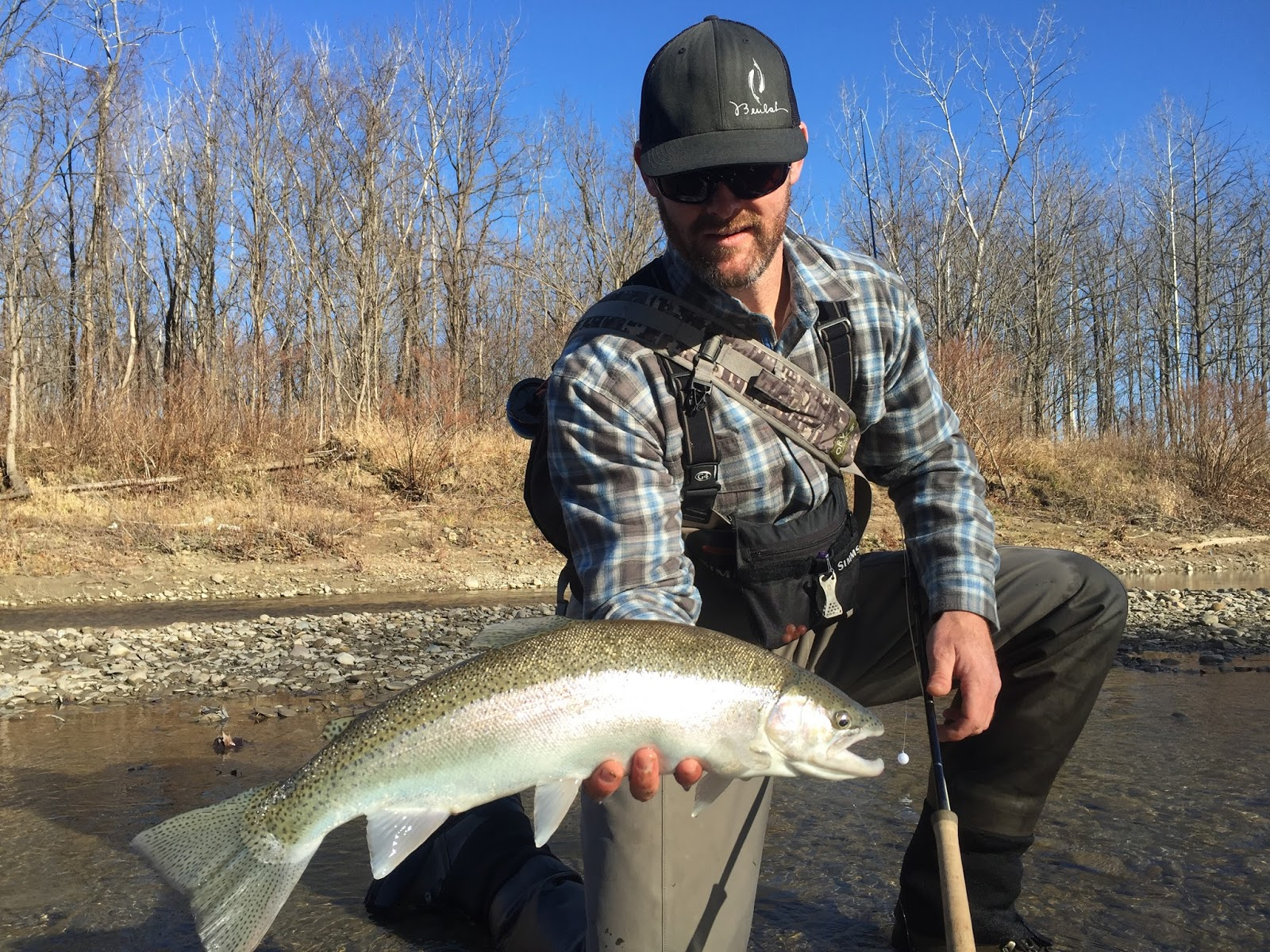 Boston fly fishing and report east coast steelhead for East coast fishing