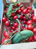 Orto di agosto: finalmente i pomodori!