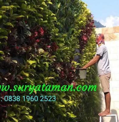 Albyflora.blogspot.com