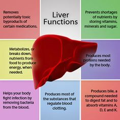 Acute and Chronic Hepatitis liver conditions