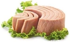 """أَفضل مصادر البروتين, لِذلك فإنّ """"نَقصَ البروتين"""" بِشَكل مُستَمِر في النِّظام الغِذائي يُؤدي إلى..."""