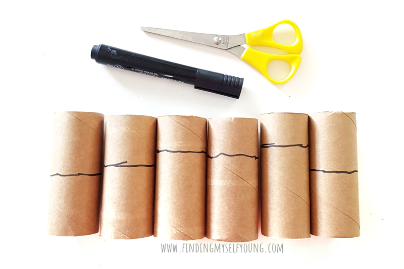 toilet paper rolls ready to cut into fireworks