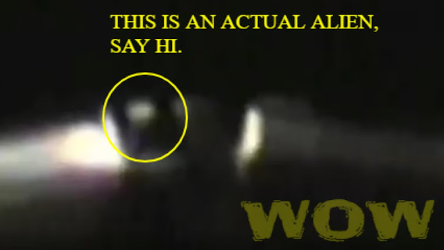 This is an actual Alien inside of a UFO regarded by investigators as real.