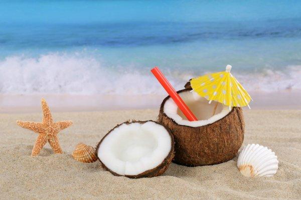 Los cocos poseen un secreto que tienes que saber