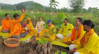 गायत्री परिवार शाखा हर्रई द्वारा वृक्षारोपण का कार्यक्रम संपन्न