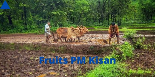 Fruits PM Kisan